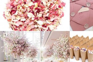 Biodegradable Wedding Confetti and Wedding Confetti Cones At A Pink, Blush Wedding