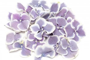 Biodegradable Wedding Decor | Amethyst Flake