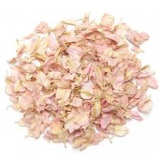 Cotton Candy Larkspur Petals