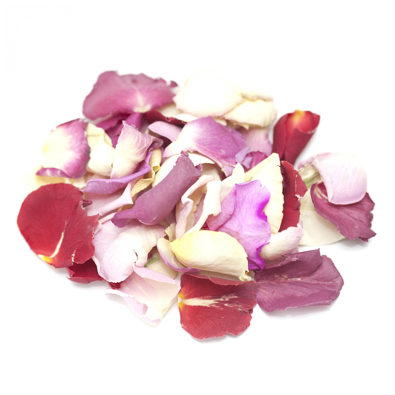 Second Grade Rose Petals