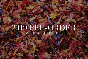 Pre-Order Your Biodegradable Wedding Confetti for 2019