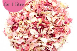 Biodegradable Blush Confetti Mix