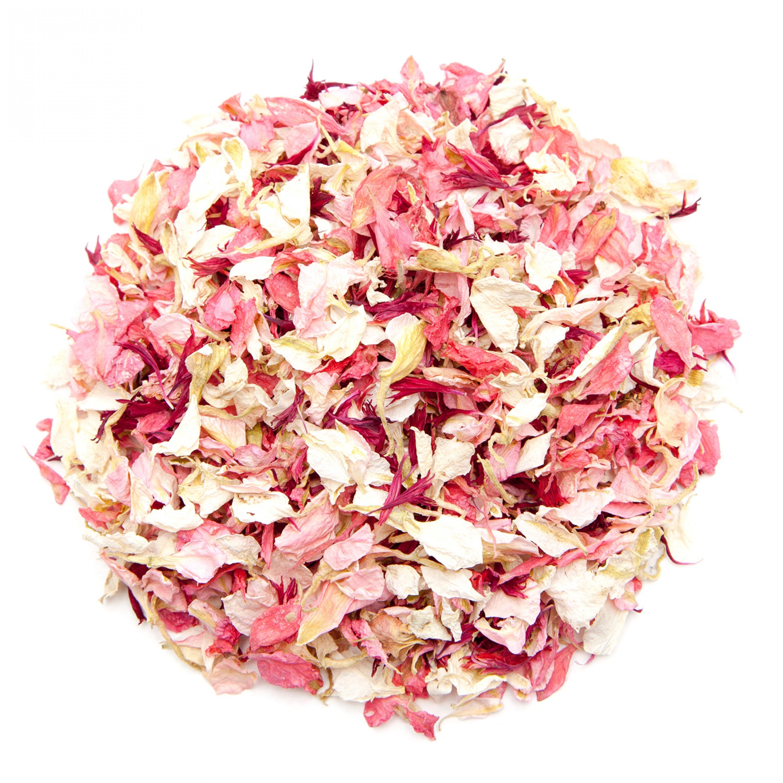 Blush pink Larkspur Petals