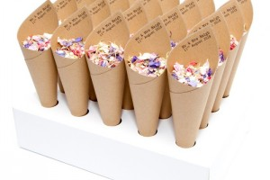 Mr & Mrs Confetti Cones