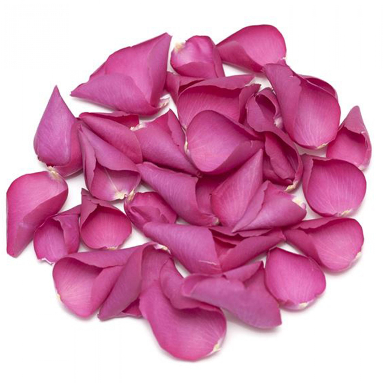 Divine Rose Petals