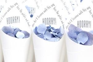 Hooray Confetti Cones