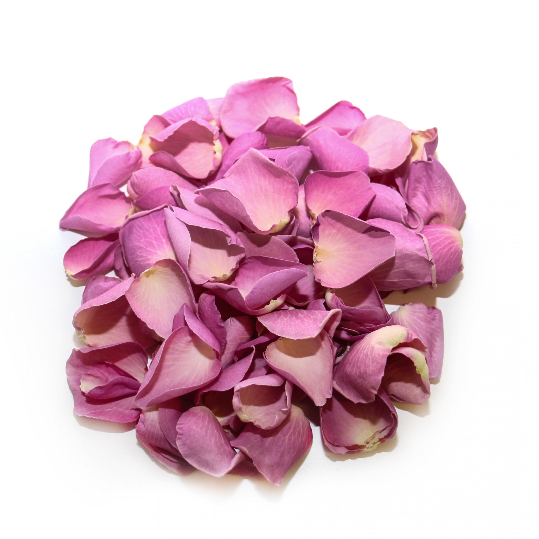 Pink Marzipan Rose Petals