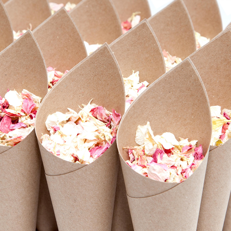 Plain Confetti Cones