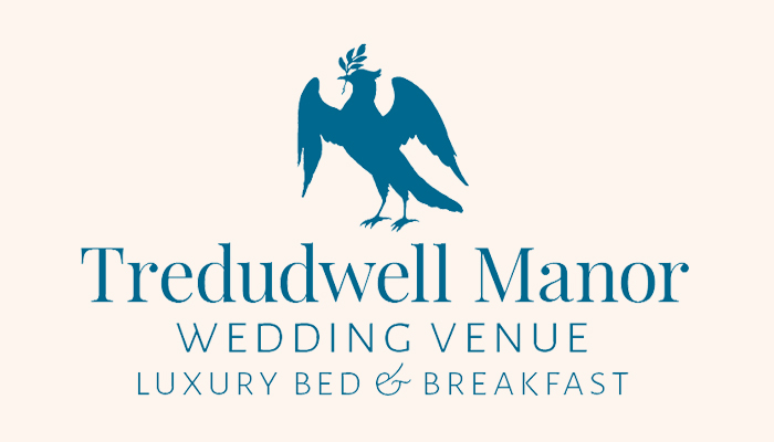 Tredudwell Manor Wedding Confetti